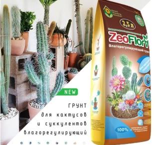Как использовать грунт для кактусов ZeoFlora?