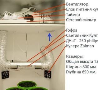 Как организовать вентиляцию в гроубоксе?