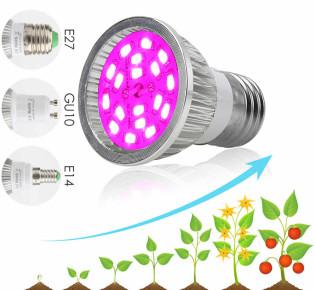 Какие лампы использовать для гидропоники?