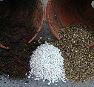 Как и сколько добавлять перлита в почву для рассады?