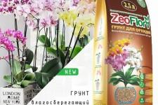 Как использовать ZeoFlora для выращивания орхидей?