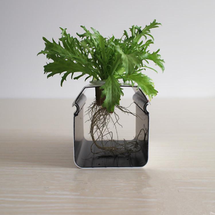 Раствор для растений на гидропонике