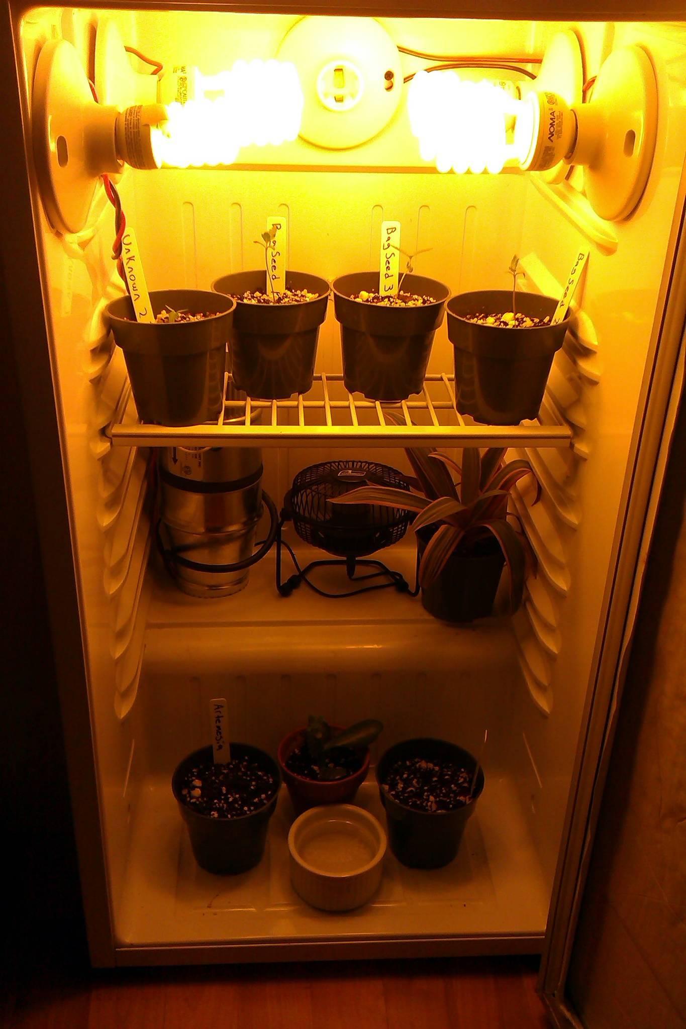 Гроубокс из холодильника
