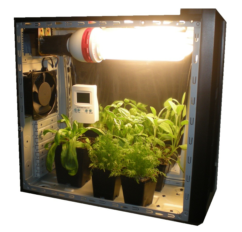 Гроубокс для выращивания растений
