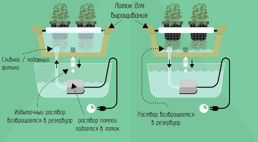 Какая гидропонная система лучше?