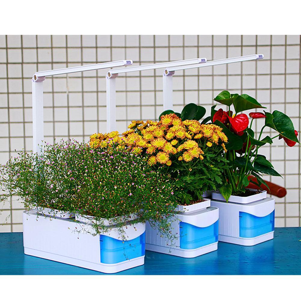 Что такое гидропоника для цветов?