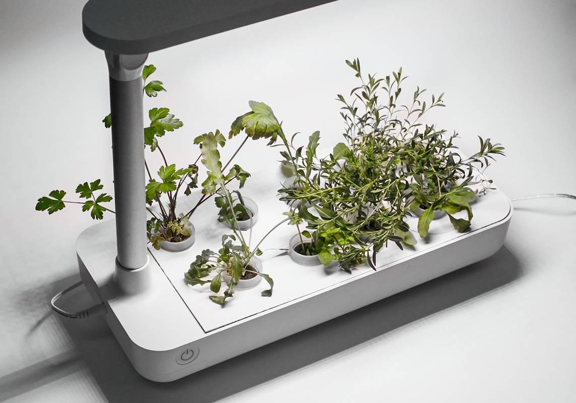 Гидропонная система Vegebox