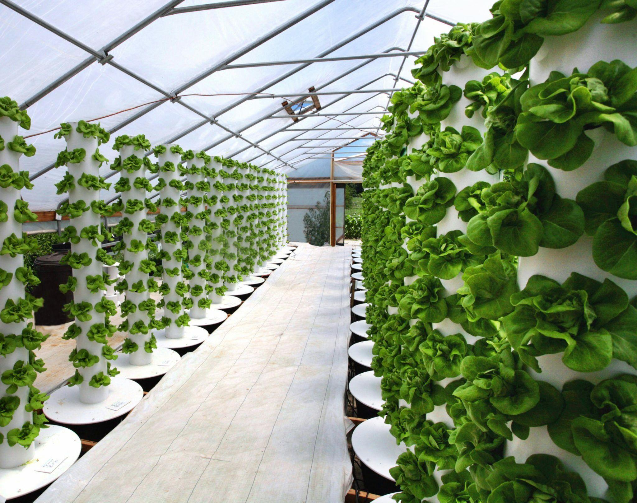 Вертикальная ферма своими руками