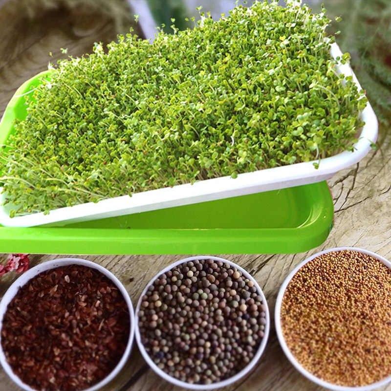 Куплю семена для гидропоники конопля курительная купить