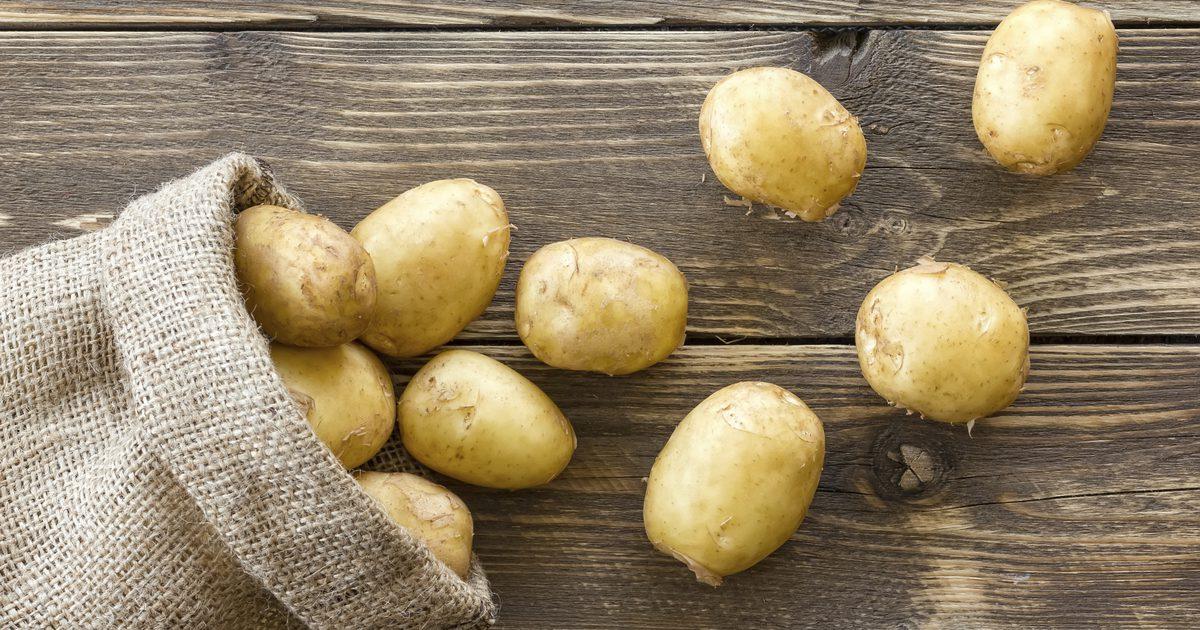 Выращивание картофеля на аэропонике