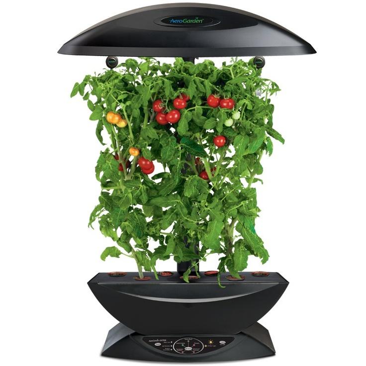 Вертикальные фермы для выращивания овощей круглый год