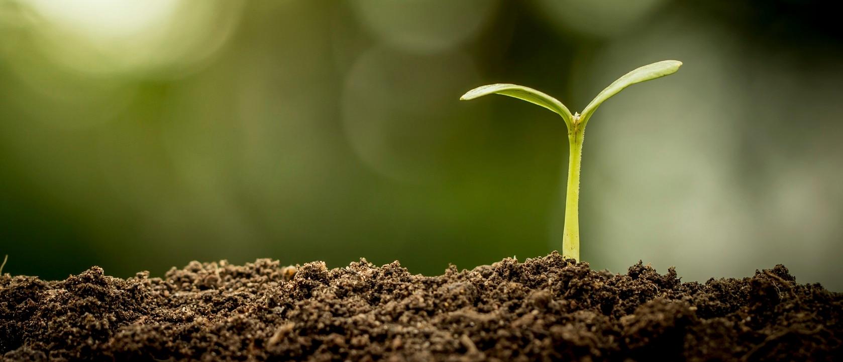 Удобрения Growth Technology
