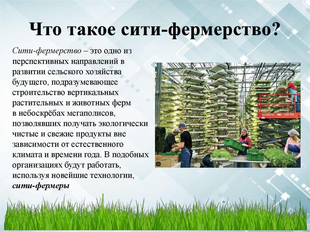 ЦООП набирает слушателей на курсы «Сити-фермерства»