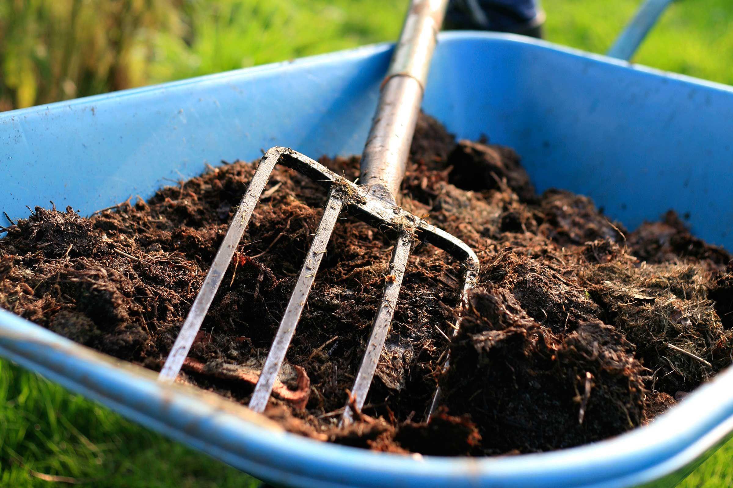 Сколько вермикулита добавлять в землю для рассады?