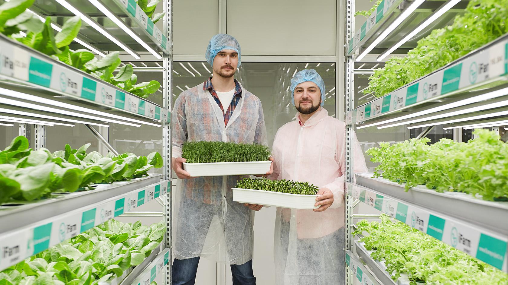 Новая вертикальная ферма в Лондоне