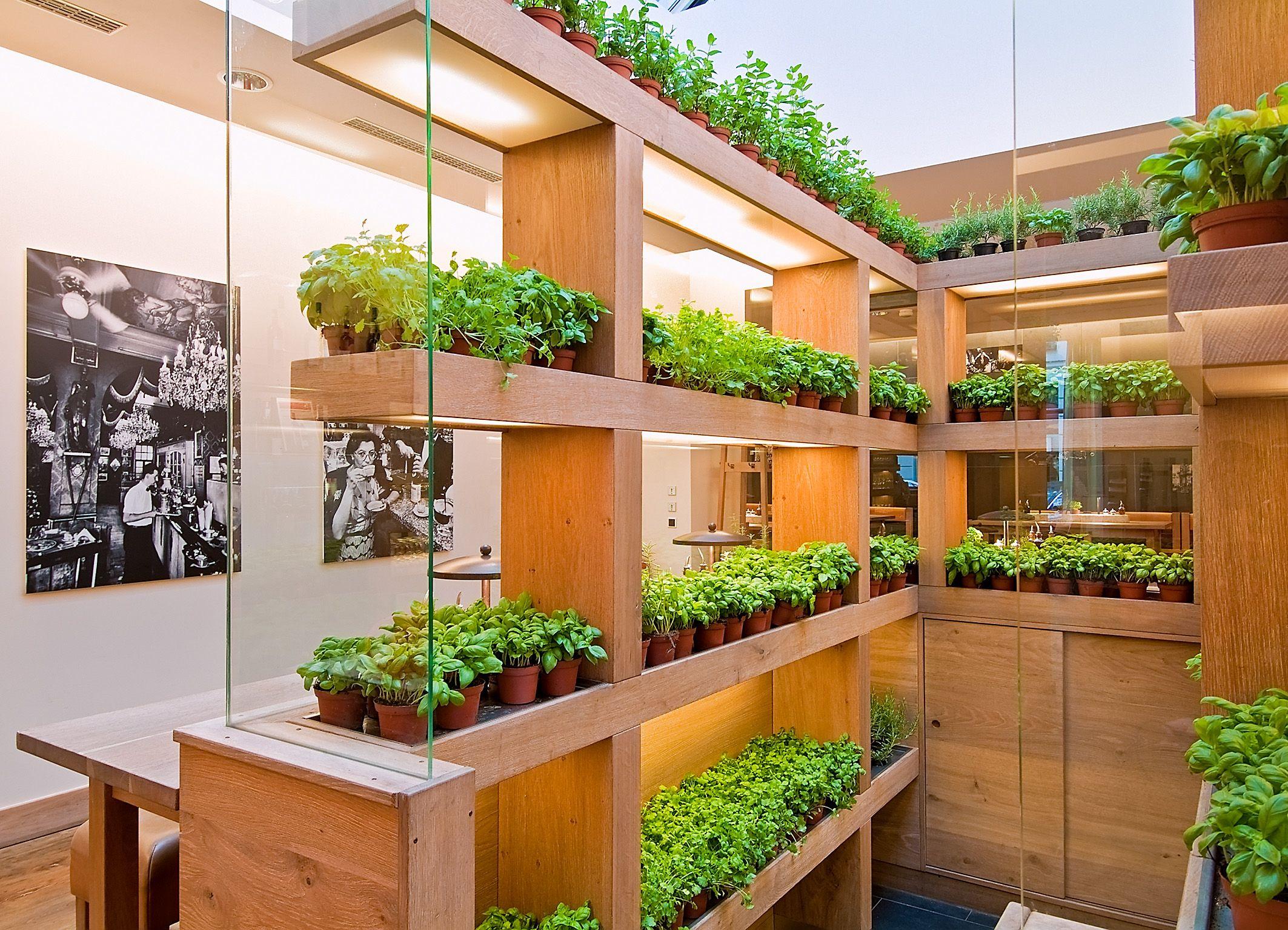 Вертикальная ферма в квартире