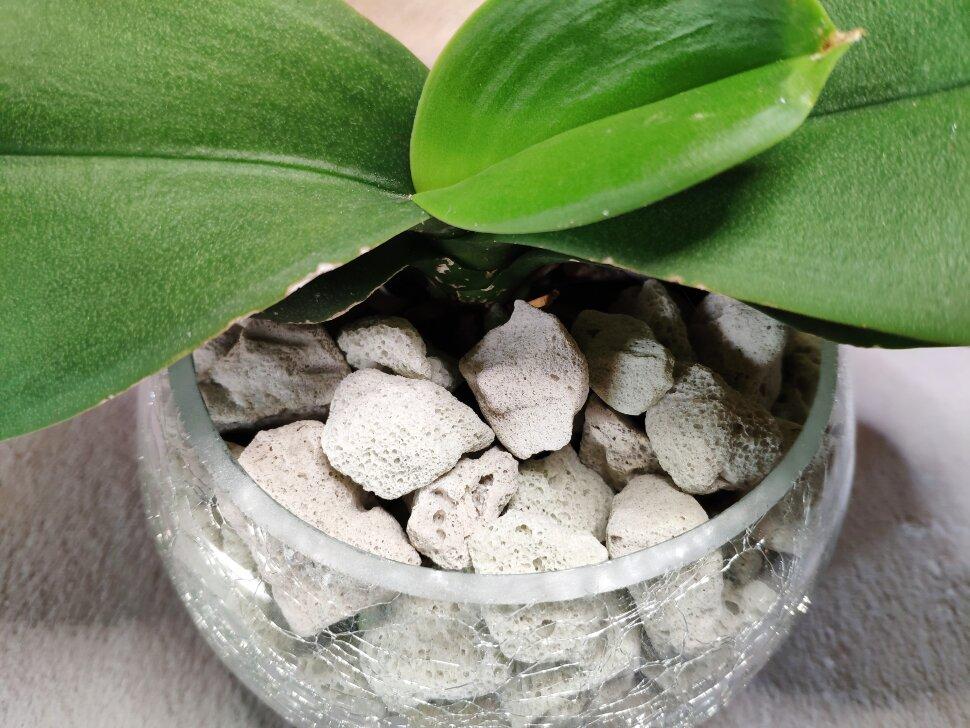 Пеностекло для орхидей