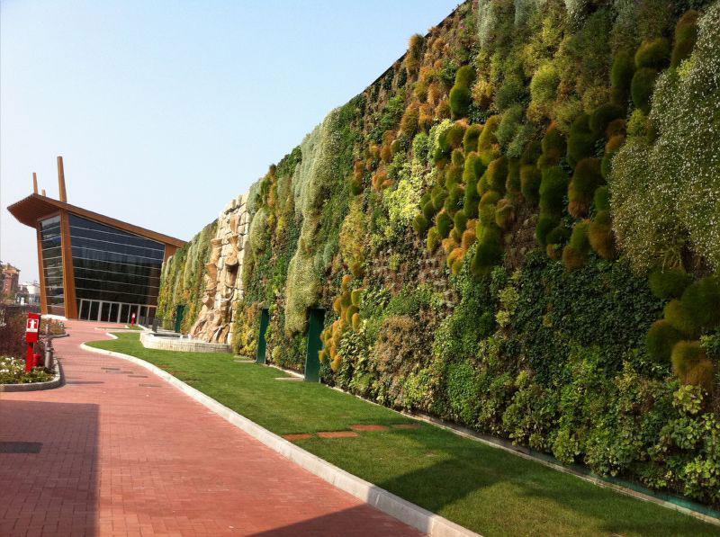 Вертикальные сады вырастут на трёх площадках в Чандигархе
