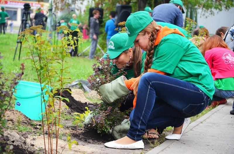 Активисты решают экологические проблемы