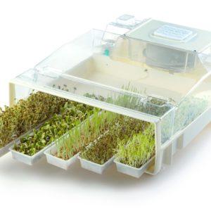 Eremon (проращиватель семян и микрозелени с прозрачной крышкой)