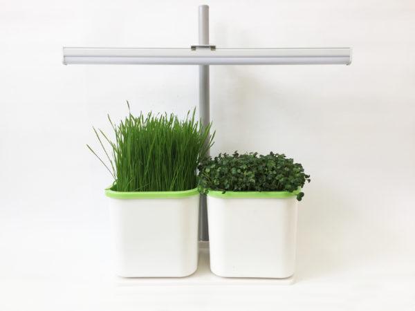 проращиватель семян 2-модульный