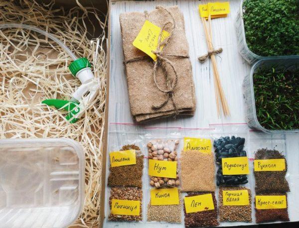 Стартовый набор для выращивания микрозелени