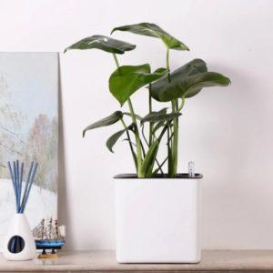 Lazy Flower Pot самополивающийся ленивый горшок для цветов в форме цилиндра
