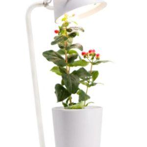 SmartPot с LED-лампой