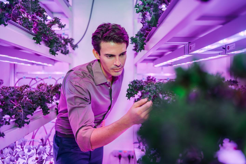 Бенджамин Свон из Sustenir Agriculture возглавляет продовольственную революцию
