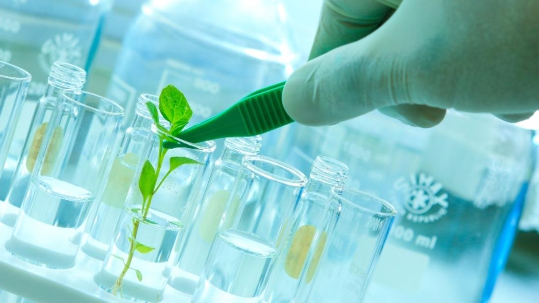 Биологические инновационные технологии