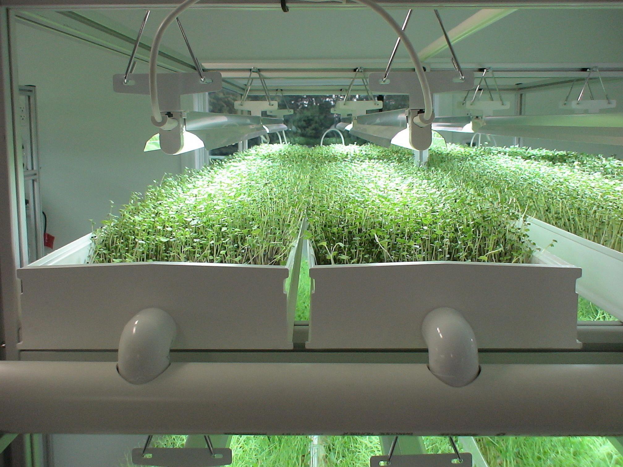 Экологически чистые интеллектуальные фермы на основе рециркуляции питательных растворов