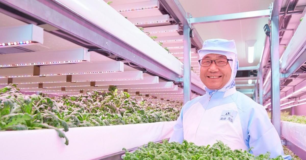 Компания из Огайо переосмысливает сельское хозяйство, переходя в закрытые помещения